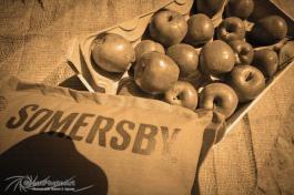Somersby5.jpg